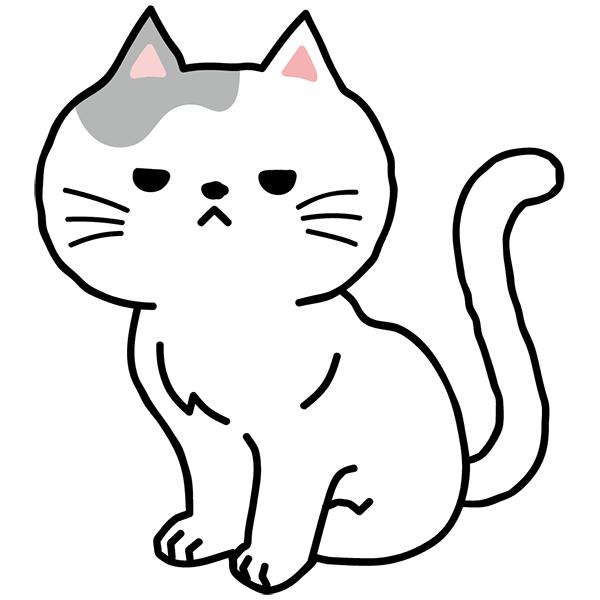 猫 不機嫌 怒る