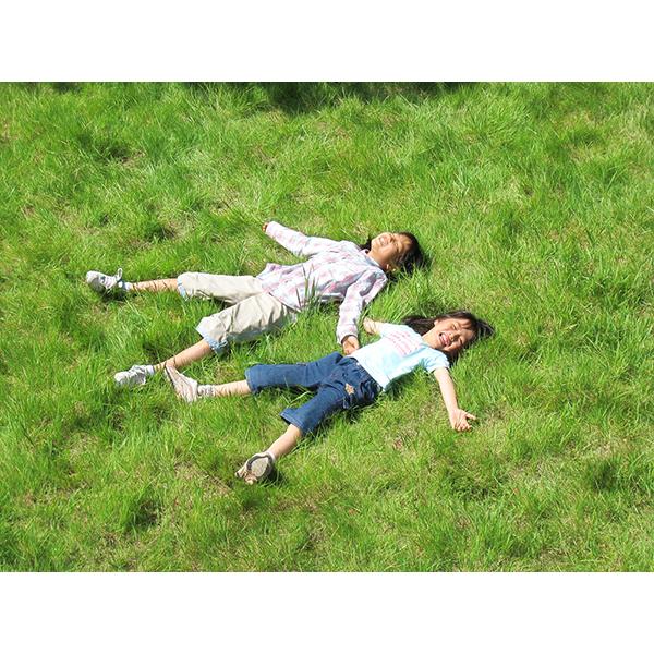 姉妹で大の字 芝生