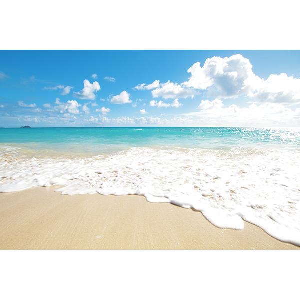 ハワイ 白砂ビーチ 波